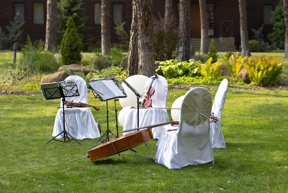 Streichquartett-Musik bei einer Hochzeit