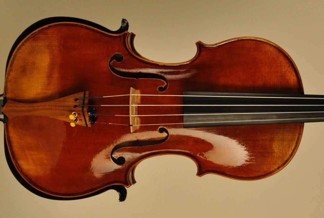 Vegane Geige