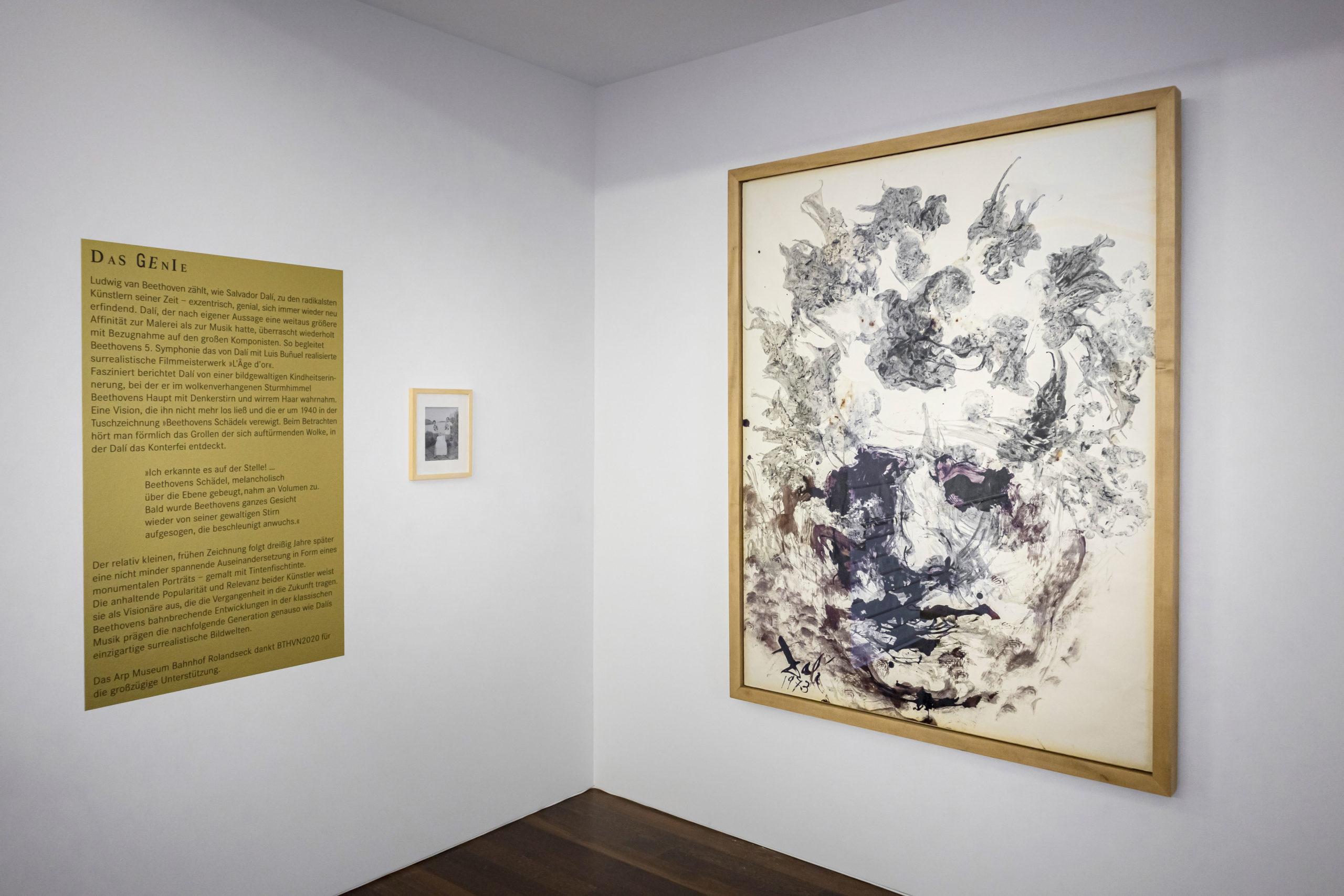"""Ausstellungsansicht im Arp Museum Bahnhof Rolandseck von """"Beethovens Kopf"""" , das Dalí mit der Tinte von echten Tintenfischen gemalt hat © Helmut Reinelt"""