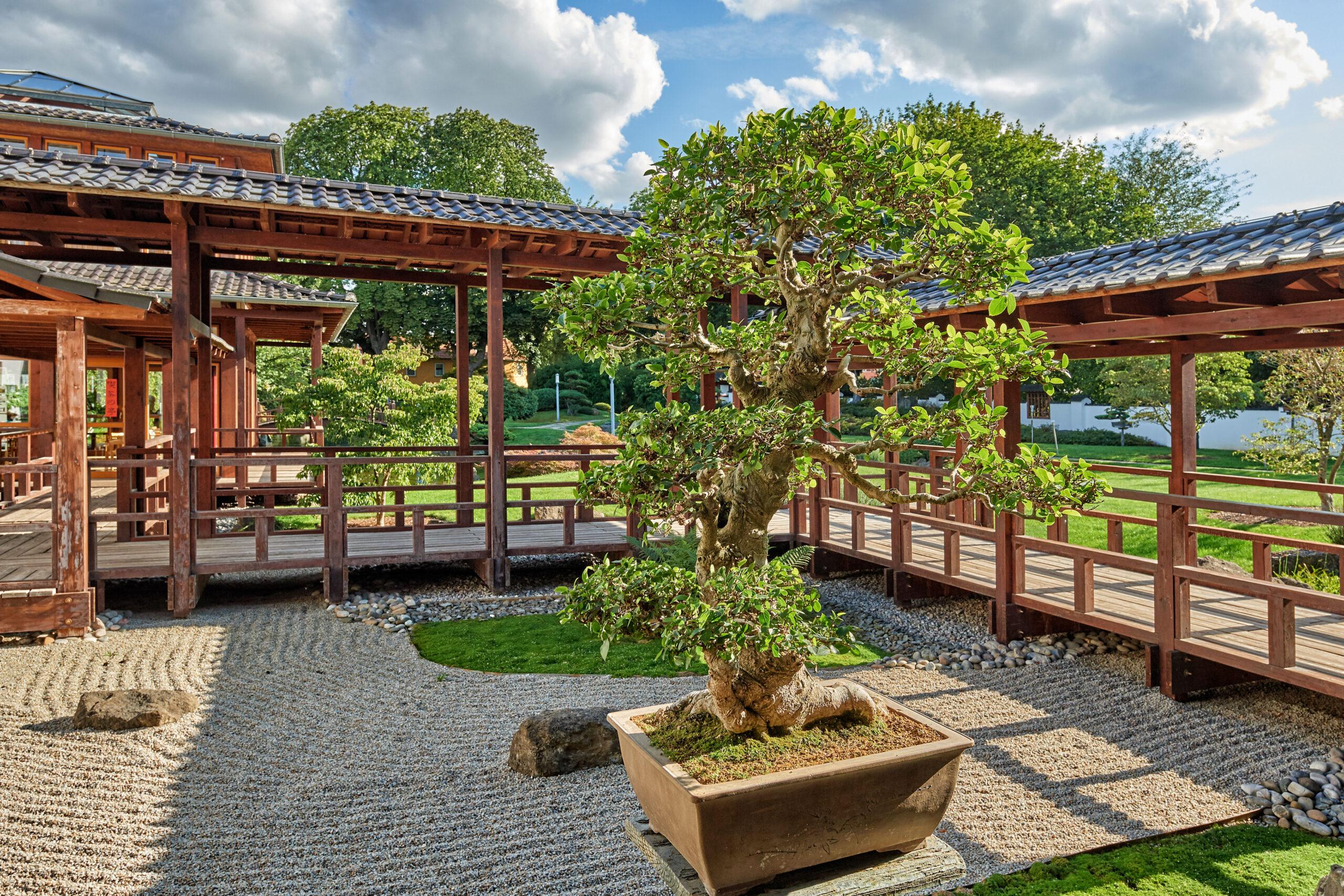 Der Japanische Garten in Bad Langensalza © Florian Trykowski / TTG